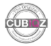 Logo Cubiqz About Us